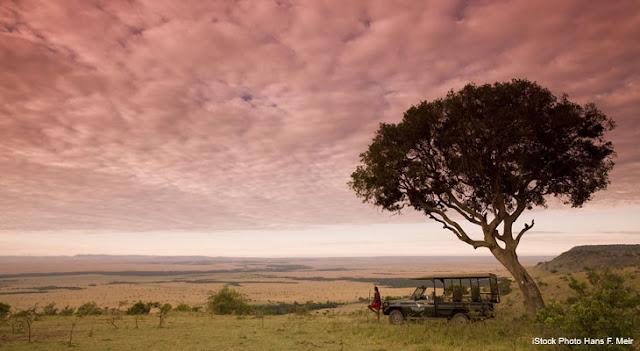 Migraciones vistas aire en Kenia