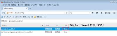 javascript.enabled画面