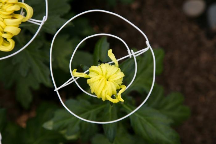 Detalle de flor en un Ozukuri