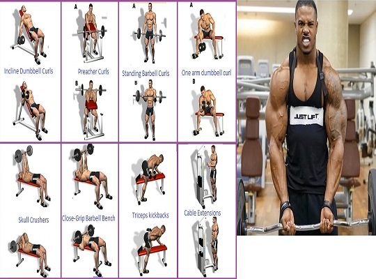 This Is One Of The Top Arms Workout Ever
