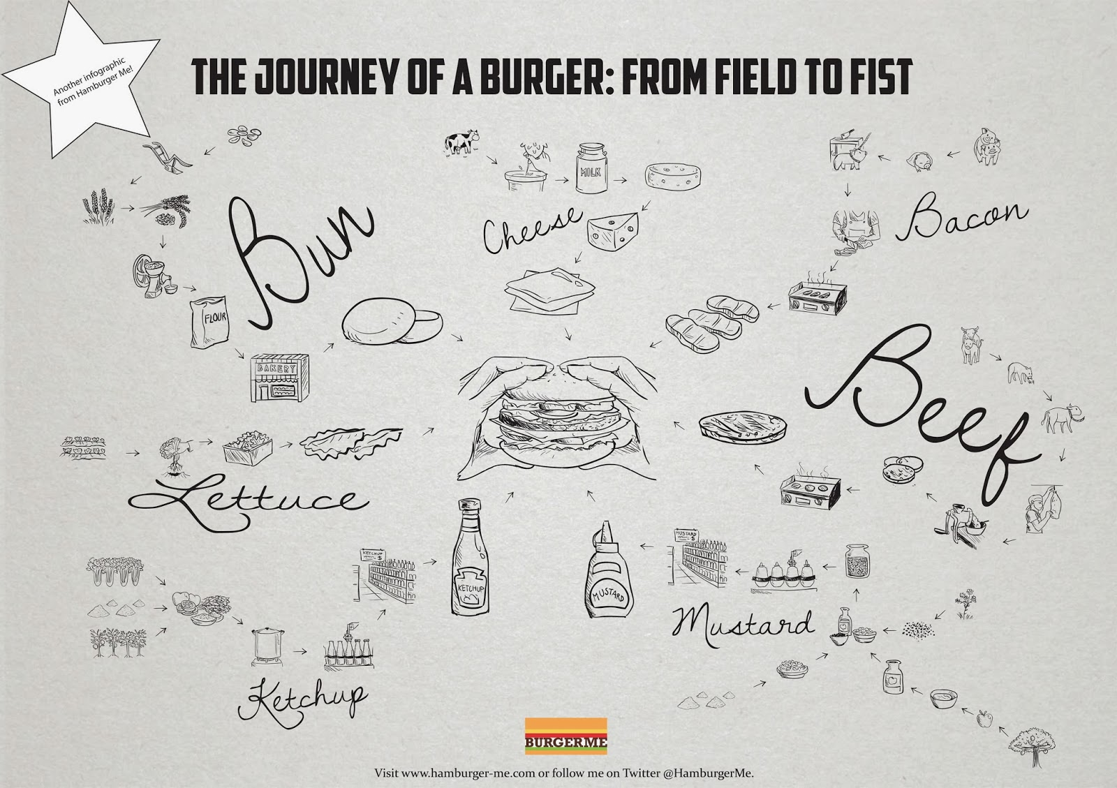 The journey of a cheese burger