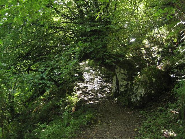 Rutas Montaña Asturias: Collado Angón, en la senda del Arcediano, camino al Canto Cabronero