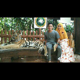 Seru Banget Family Gathering Di Taman Safari Indonesia Ii Prigen Pasuruan Destinasi Ade