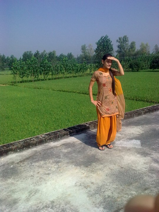 Punjabi Suits In Chandigarh Fb