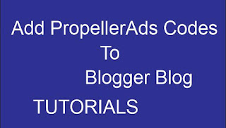 add propellerads code blogger