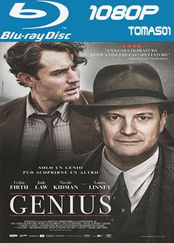 Genius (El editor de libros) (2016) BRRip 1080p