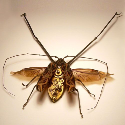 mechanical insect art by Mike Libby