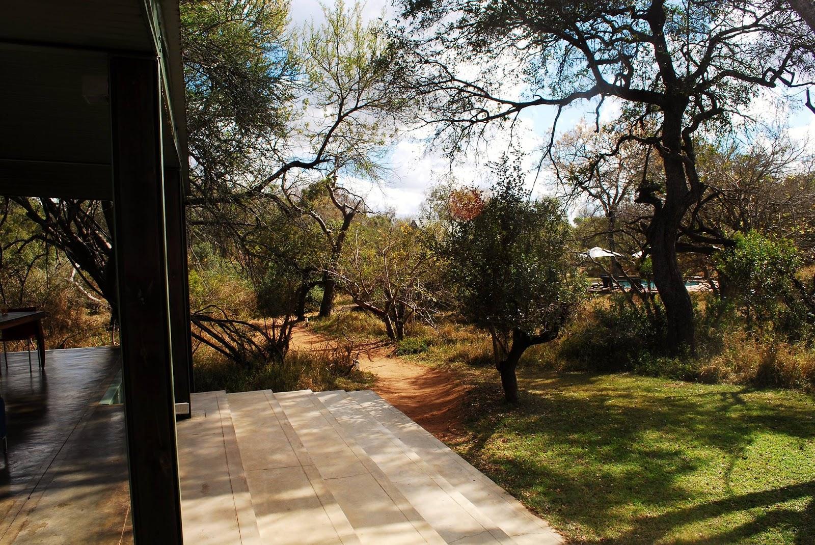 safari, camp, balcony, south africa, travel