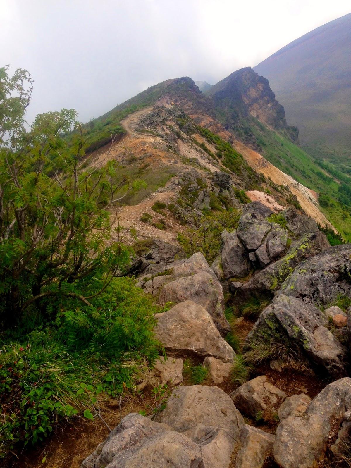 仙人岳、鋸岳、Jバンド方面へ続く美しく険しい尾根道