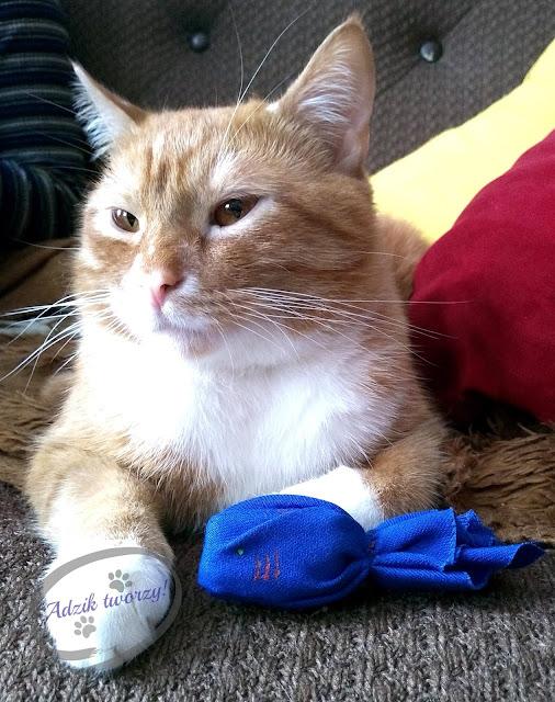 Adzik tworzy - Zero Waste DIY zabawka dla kota