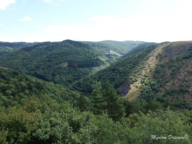 Castrum de Contrast dans la Montagne Noire Tarn