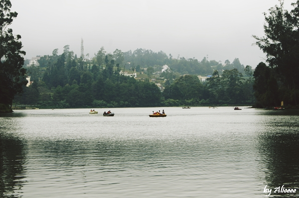 lacul-din-Ooty-India