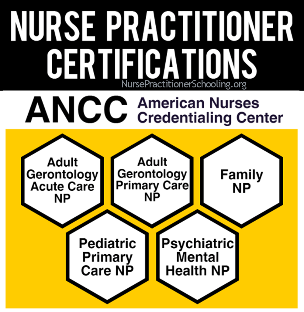 nurse practitioner certification