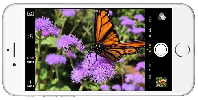 Focus Pixels on iPhone 6s Plus
