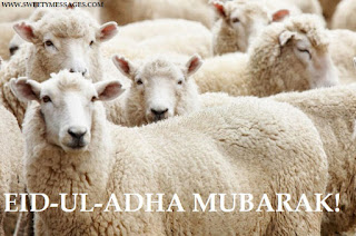 eid-ul-adha images download