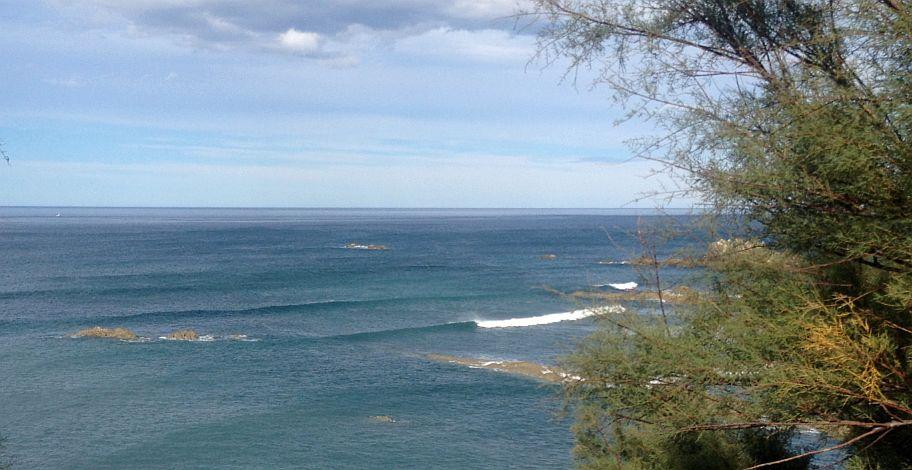 aprender hacer surf