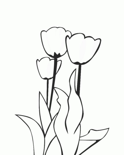 gallery of printable coloring pages for kids flowers spring coloring pages with humming bird coloring pages - Hummingbird Flower Coloring Pages