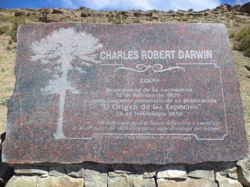 Bosque de Charles Darwin