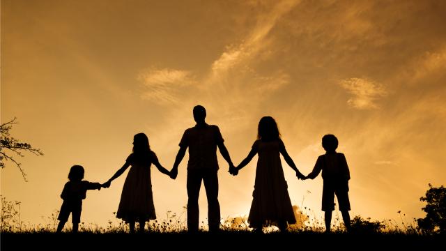 Resultado de imagem para familia perfeita não existe
