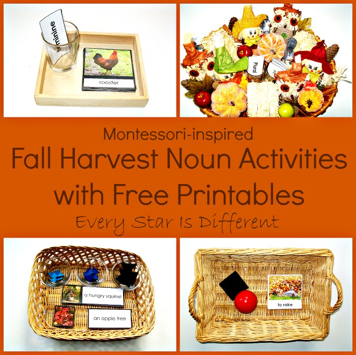 Fall Harvest Noun Activities