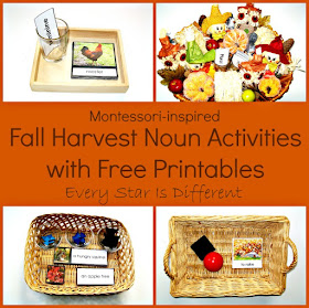 Fall Harvest Noun Activities