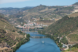 The vineyards in the Douro Valley