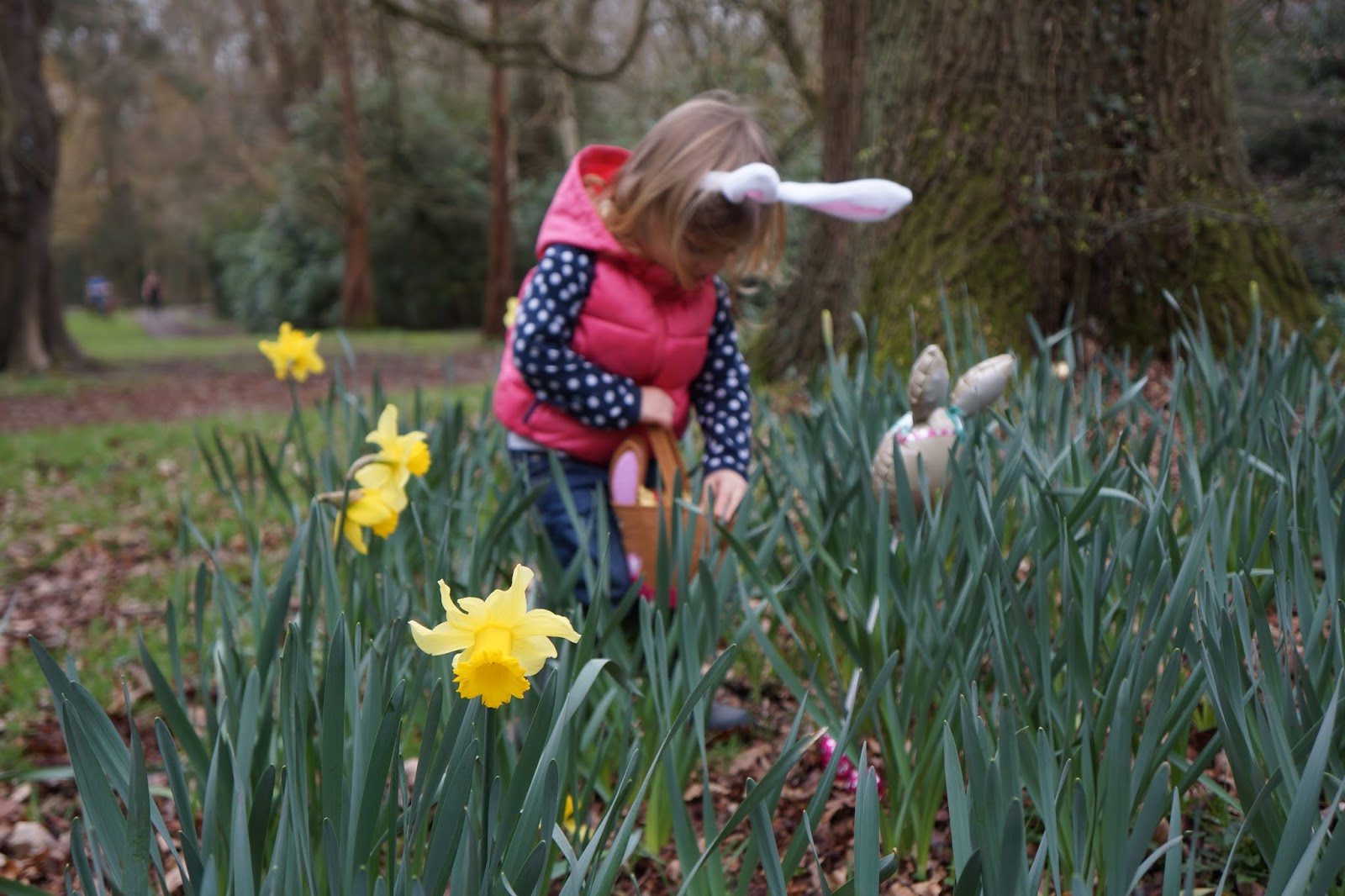 easter egg hunt at whitewebbs forest