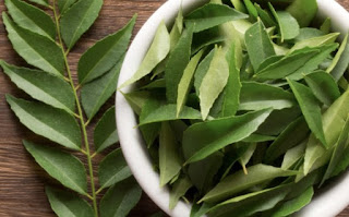 5 Proven Health Benefits Of Curry Leaves You Need To Know