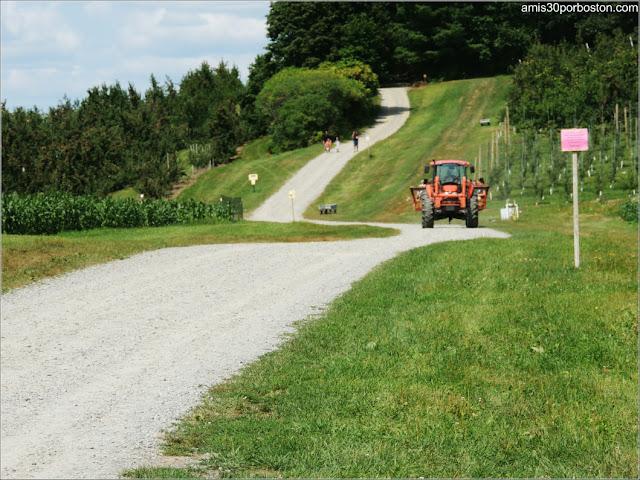 Granjas de Massachusetts: Tractor de la Cider Hill Farm