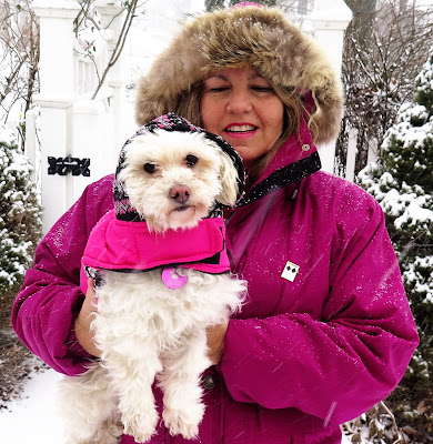 Keep dogs safe from Winter cold with these Pet Safety Tips for Winter