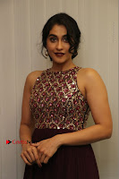 Actress Regina Candra Latest Stills in Maroon Long Dress at Saravanan Irukka Bayamaen Movie Success Meet .COM 0024.jpg