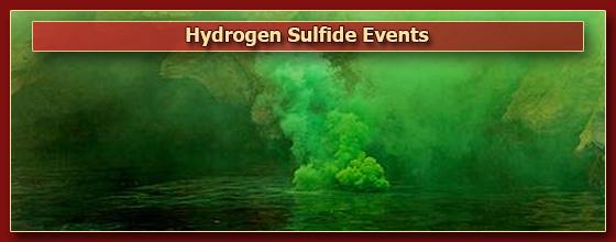 Divergent hydrogen sulfide chemosynthesis