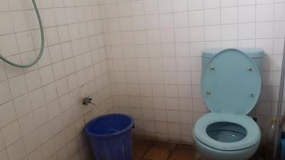 weird toilet position