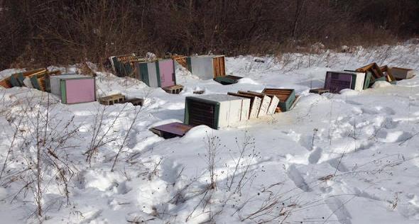 Φρικτές εικόνες: Πήγε για χειμωνιάτικη επιθεώρηση και δείτε τη βρήκε ο καημένος ο μελισσοκόμος....