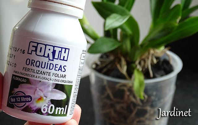 Como usar o adubo foliar químico para orquídeas
