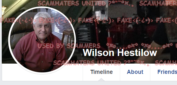 scamhaters united hestilow contact from these pictures is fake