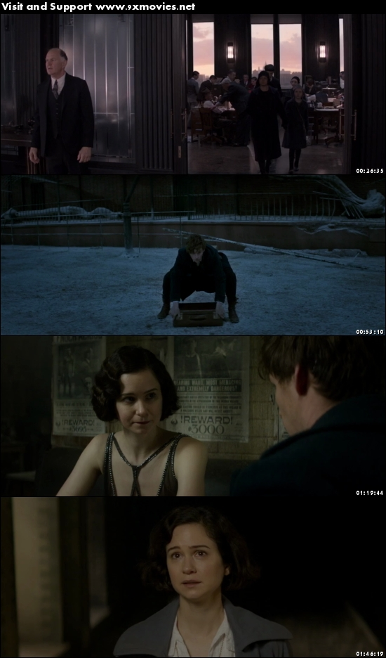 Fantastic Beasts and Where to Find Them 2016 English 720p BRRip