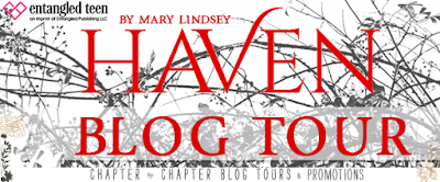http://www.chapter-by-chapter.com/tour-schedule-haven-by-mary-lindsey/