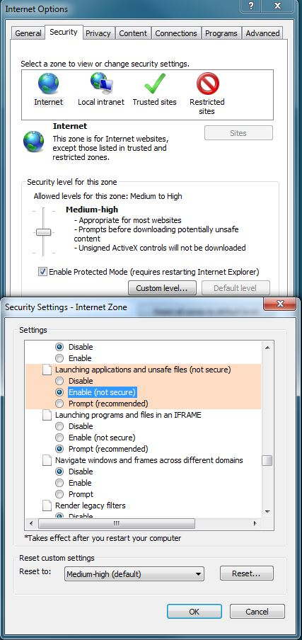 Your Internet Security settings prevented one or more files