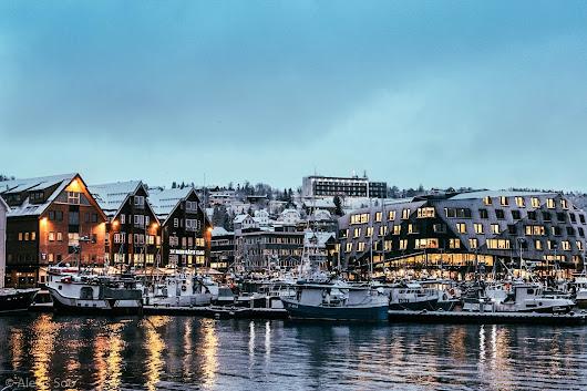 Tromsø, Norway | Christmas, Whale Watching, Aurora and Dog Sledding |