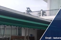 Update harga canopy kain, tenda membrane, awning gulung saat ini