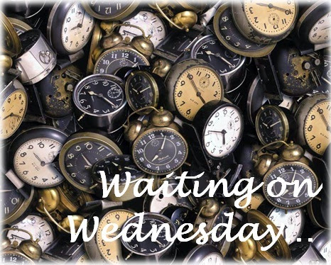 Libby Blog: Waiting on Wednesday #238 - Spontaneous, Rebel Genius & Bad Blood