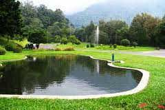 tempat wisata taman cibodas