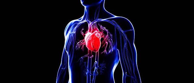 Mengukur Detak Jantung Dengan Androidg