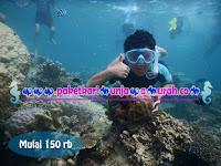 Paket Snorkeling Karimunjawa Rp150.000,- / Pax