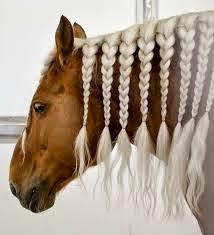 Konie Zwierzęta Które Kocham Końskie Fryzury