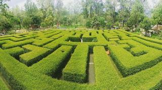 Taman labirin di coban rondo