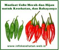 https://www.infokesehatan.web.id/