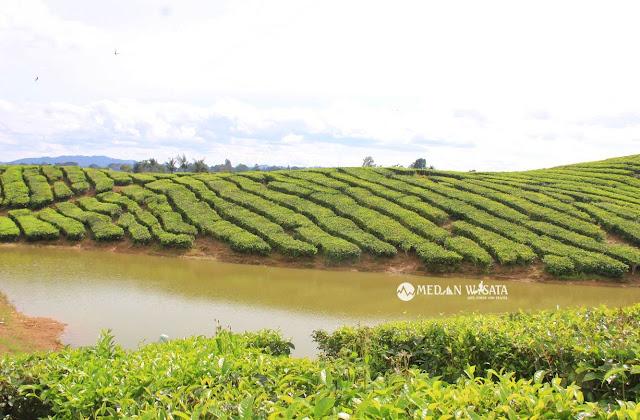 Danau Rawang, Sisi Lain Kebun Teh Sidamanik