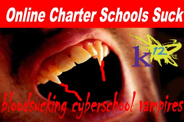 Image result for big education ape  cyber charters